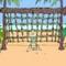 Coconut Joes -  Sportowe Gra