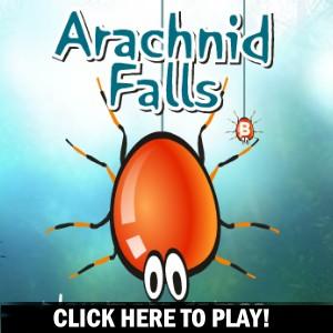 Arachnid Falls -  Gry akcji Gra
