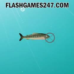 Shooting Fish -  Strzelanie Gra